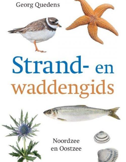 Natuurgids Strand en waddengids